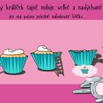cupcake adn rabbit